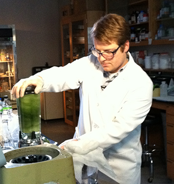 In the early days of the research, TMV was grown on tobacco plants, then extracted for use in a series of labor-intensive steps. In this photo from 2010, Ph.D. student Adam Brown uses a blender to pulverize the TMV-laden tobacco leaves. PHOTO CREDIT: Rebecca Copeland, ISR