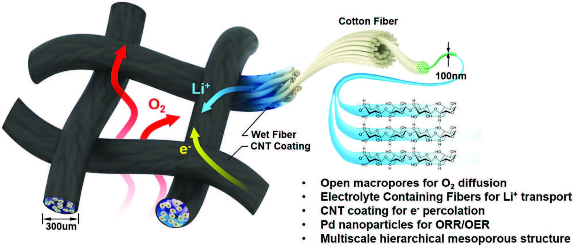 Schematic representation of the design and decoupled pathways (O2 gas, electrolyte) within the wet textile-based air cathode. The structure of the air cathode facilitates mass and ionic transport: O2 gas flows through the woven mesh, fast Li+ transport along the textile fibers, and rapid electron transfer along the CNT-coated textile surface. The coated textile, composed of intertwined nanofibers and microchannels, acts as a nanoionic device by facilitating both electrolyte and ionic (Li+) transport.