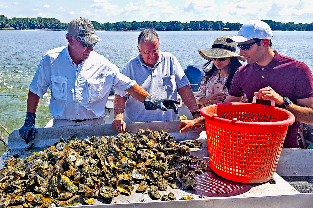 Members of the research team working together in the Chesapeake Bay for oyster imaging and dredging testing. Credit: Yang Tao/University of Maryland