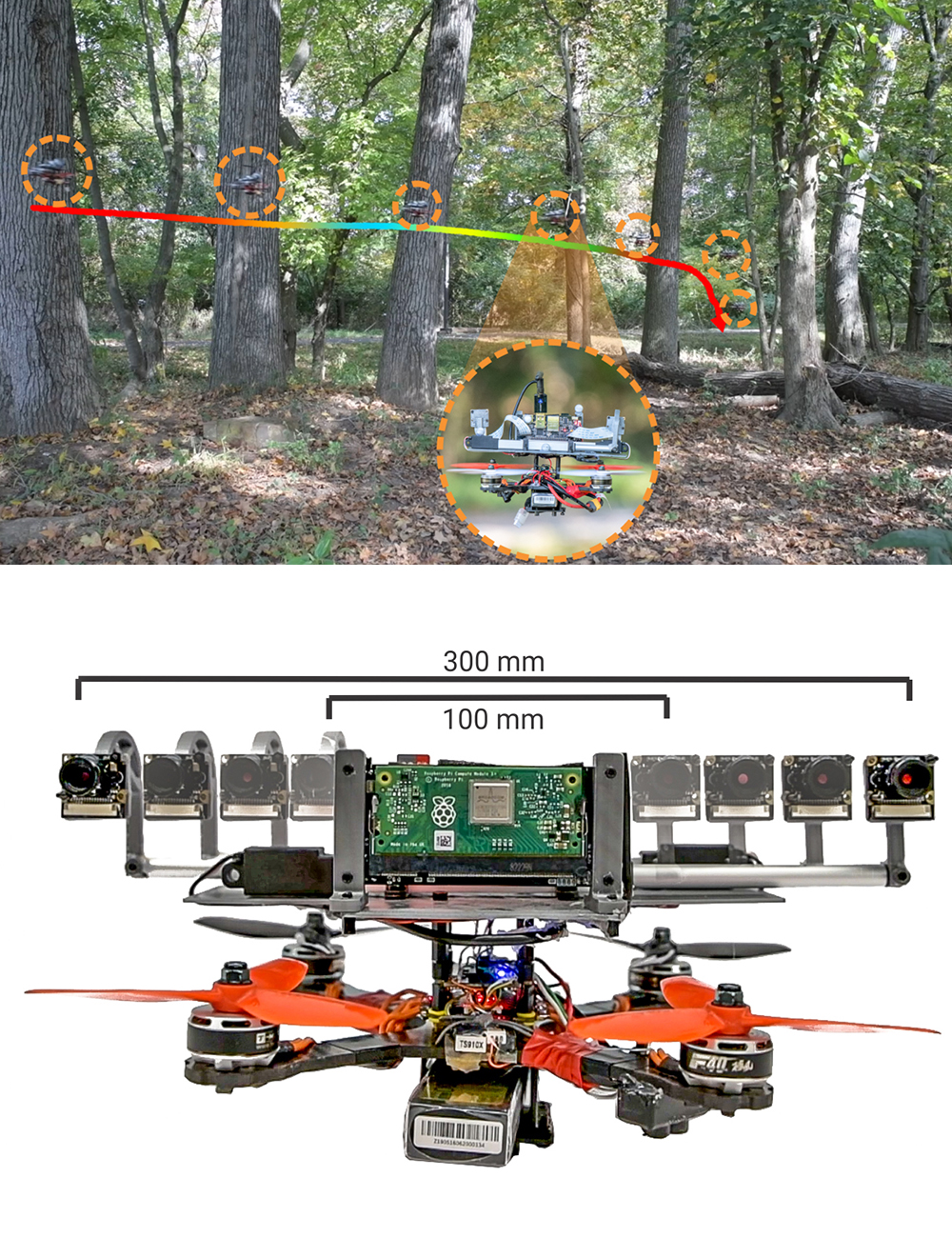 Above: Flying through a forest, the baseline of the quadrotor's stereo system changes and is colored coded (blue to red indicates 100 mm to 300 mm baseline). Below: Variation of baseline from 100 mm to 300 mm. Notice that at the largest baseline, the stereo system is bigger than the quadrotor. Source: Figures from the paper.