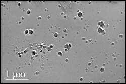 Cryoplunge transmission electron microscopy (cryo-TEM) image of iron oxide nanoparticles. Cryo-TEM is used to prevent nanoparticle aggregation and improve dispersity of particles for enhanced imaging.