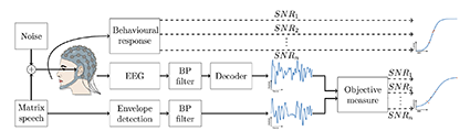 Figure 1 from the paper. Experimental setup: Flemish Matrix sentences were used to behaviorally measure speech intelligibility. In the EEG experiment, the researchers presented stimuli from the same Matrix corpus while measuring the EEG. By correlating the speech envelopes from the Matrix and the envelopes decoded from the EEG, the researchers obtained an objective measure.