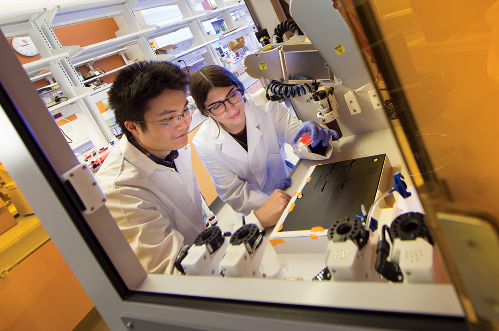 Guang Yang (left) and Julia Pinsky holding lab-grown engineered tissue. Photo: John T. Consoli