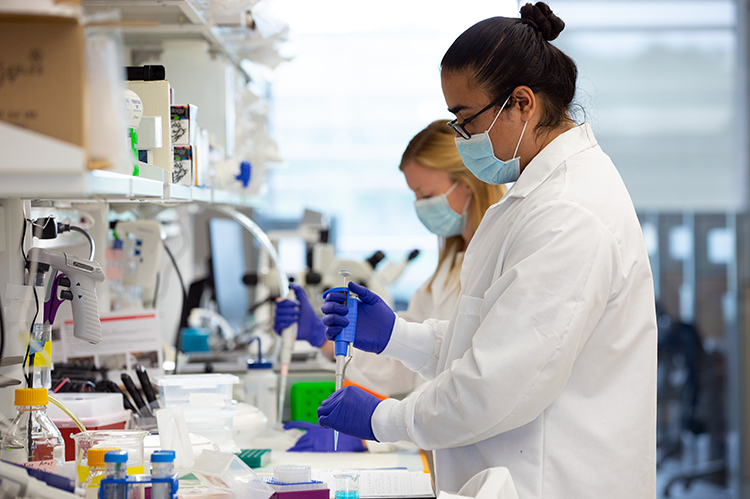 Gurneet Sangha, in foreground, and Callie Weber in the lab. Photo: Lee Gillenwater