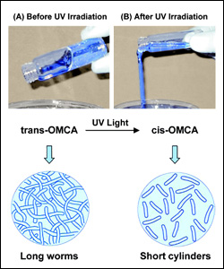 Photoresponsive (PR) fluids consisting of CTAB and OMCA. When OMCA is in its trans from, its mixture with CTAB gives rise to long, entangled wormlike micelles. Upon UV irradiation, trans-OMCA gets photoisomerized to cis-OMCA, and the corresponding change in molecular geometry causes a drastic reduction in micellar length.