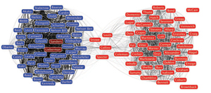 Shneiderman's SocialAction analysis tool  shows collaboration between pairs of U.S. senators. The Democratic senators (blue) are at the left and Republican senators (red) at the right; Sanders and Lieberman (magenta) are independents. Shneiderman argues Science 2.0 must develop tools like this to analyze human relationships and collaborations. View a larger version of this diagram at HCIL's SocialAction web page.