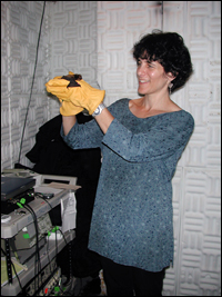 Cynthia Moss in the test chamber with one of the bats used in the study