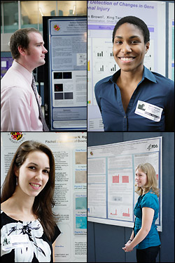 Participants in the 2010 REU program who presented their work at the FDA included, clockwise from top left: Daniel Healy (Washington State University), Anika Freeman (University of Maryland), Ellen Tworkowski (Carnegie Mellon University), and Corrine Riggin (University of Maryland). Freeman and Riggin are both rising seniors from the Fischell Department of Bioengineering.