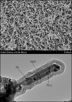 Transmission electron microscopy (TEM) image of a nanostructured anode for lithium-ion batteries. The TMV is used as a template for the deposition of nickel and titanium dioxide (TiO2) films which act as the conductive core and the active battery material shell, respectively.