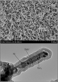 SEM image of Ni/TiO2 nanocomposite electrode (top), cross-section TEM image of an individual nanorod showing the core/shell nanostructure (Credit: University of Maryland, College Park)