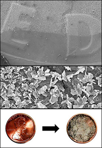 Top: The edge of the droplet of silver nitrate on a dime. The lighter area is where the galvanic displacement occurred, and silver crystals have grown. Middle: Silver plates grow outward from the surface of a dime. Many of the edges of these plates terminate in smaller, sharp features that greatly enhance the Raman scattering signal. Bottom: Micro- and nanoscale silver crystals grow in a matter of minutes on the surface of a penny using a simple, single step reaction. These crystalline structures are capable of significantly enhancing the Raman scattering signal from molecules that adsorb to the surface of the crystals. The portability of the coins coupled with the simplicity of the reaction make the possibility of remote, field use of surface enhanced Raman scattering (SERS) a distinct possibility.