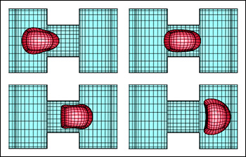 A computational model showing a capsule's changes in shape as it moves through a channel in a microfluidic device. The three-dimensional capsule views were derived from the actual spectral grid using orthographic projection in plotting. From