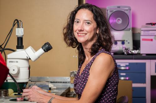 Dr. Lisa Taneyhill, Associate Professor, Department of Animal and Avian SciencesImage Credit: Edwin Remsberg